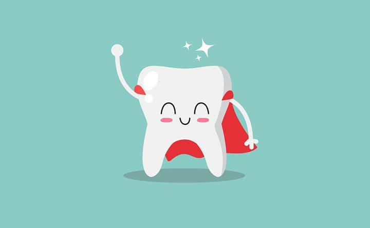 Scoperto un nuovo meccanismo attraverso cui i dentisti potranno rigenerare i denti