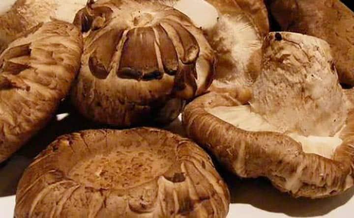 Un fungo al giorno tiene lontano il dentista e non solo